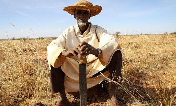 A farmer in Dan Kada, Maradi region, Niger, 2011.