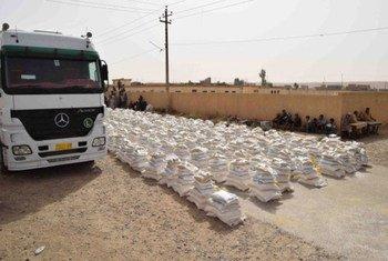 Cargamento humanitario del PMA para el norte de Iraq. Foto de archivo: PMA MENA