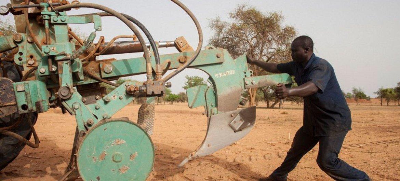 Trabajador agrícola en Burkina Faso. Foto de archivo: FAO