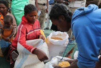 Des femmes à Amjampaly, Madagascar, collectent des denrées ainsi que de la nourriture prête à consommer.