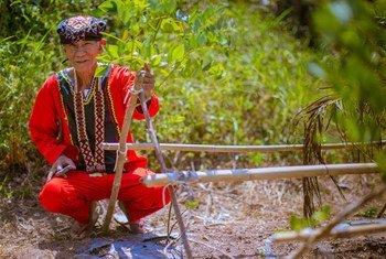 Datu Rico Pedecio, jefe de la tribu Manobo en Filipinas. Tras la devastación del tifón Haiyan, los Manobo reforestaron bosques y parques destruidos por las tormentas. Foto: FAO/Rommel Cabrera