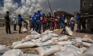 Ajuda do PMA chegando no Haiti