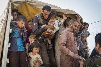 Muchas familias huyen de Mosul, donde el ejército iraquí lleva a cabo una ofensiva para recuperar el control de la ciudad de manos del ISIS. Foto: ACNUR/Ivor Prickett