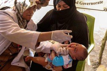 Ребенок в лагере для внутренних переселенцев в Ираке получает вакцину от полиомиелита. Фото ЮНИСЕФ/Ватиг Хузаи