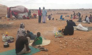 The onset of the rainy season is likely to worsen living conditions for those displaced by violence who are now seeking shelter in the open in the Xaar-xaarka area of Gaalkacyo, Somalia.