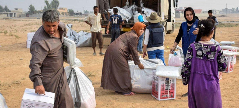La Organización Internacional de las Migraciones distribuye paquetes de ayuda a desplazados internos en Qayyarah, en Iraq.