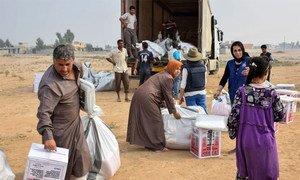 国际移民组织图片