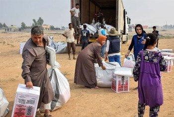 L'OIM distribue de l'aide à des personnes déplacées à Qayyara, près de Mossoul, en Iraq. Photo OIM