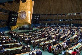 联合国大会。联合国图片/Amanda Voisard