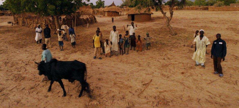 تتأثر المجتمعات المحلية الريفية، مثل قرية دان كادا في نيجيريا، بتغير المناخ والضغوط البيئية. المصدر: الصندوق الدولي للتنمية الزراعية