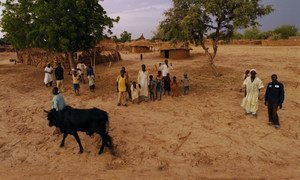 The results of climate change and environmental pressures are acutely experienced by rural communities such as the Dan Kada Village in Nigeria.
