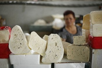 Armenian cheese on sale at the market in Yerevan, the capital and largest city in the country.