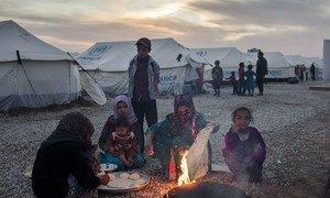 Une femme accroupie au sol prépare du pain en dehors de la tente familiale située dans le camp de Hasansham nouvellement construit. La famille a fui les combats près de sa maison dans les environs de Mossoul la semaine dernière. Photo HCR/Ivor Prickett
