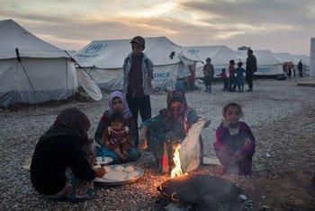 Иракцы, бежавшие из окрестностей Мосула Фото УВКБ/Ивор Ррикетт