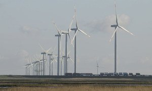 At the flat Wadden Sea coast in the German state of Schleswig-Holstein, the threat of sea level rise and attempts to mitigate climate change by producing renewable energy can be studied side by side. Wind power is a major source of electricity.
