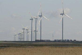 Sur la côte de la mer de Wadden, dans l'État allemand du Schleswig-Holstein, la menace de l'élévation du niveau de la mer et les tentatives d'atténuer les changements climatiques en produisant de l'énergie renouvelable peuvent être étudiées de pair. L'énergie éolienne est une source importante d'électricité.