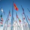 Banderas de los países participantes en la COP 22 ondean en la entrada donde se celebra esa conferencia, en Marrakech. Foto: UNFCCC