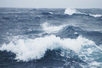 海洋表面温度普遍升高。