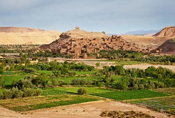 جنوب جبال الأطلس الكبير في المغرب.