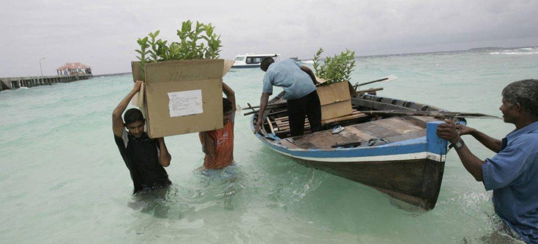 Maldivas são um Estado-ilha que enfrenta muitos desafios devido à mudança climática
