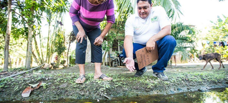 携带疟疾寄生虫的蚊子容易在水洼中滋生。