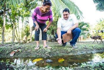 El agua estancada es un lugar potencial para el nacimineto de mosquitos que llevan el parásito de la Malaria.
