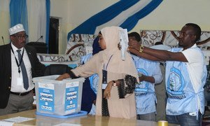 Electoral officials count the votes during the electoral process to choose members of the lower house of the federal parliament in Baidoa, Somalia on November 16, 2016.