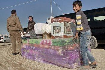 Иракские переселенцы получают гуманитарную помощь Фото ООН/Рашид Хуссейн Рашид