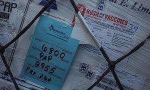 A shipment of cholera vaccines arrives in Haiti.