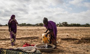 Worsening drought conditions have left hundreds of thousands of Somalis facing severe food and water shortages.