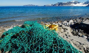 Marine waste, mainly fishing gear, being collected on the beaches of Northwest Spitsbergen, Norway.