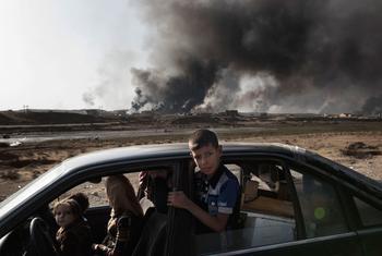 Перемещенные лица в Ираке