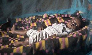 Continente africano é o mais afetado, com 94% dos casos e mortes globais