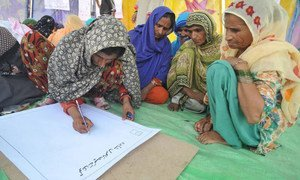 Women in Pakistan build their knowledge and skills at an FAO-supported rural livelihoods school.