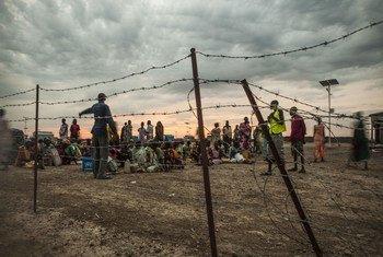 南苏丹一处平民保护营地。国际移民组织/Bannon
