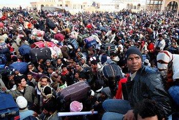 Miles de migrantes esperan para trasladarse de Libia a Túnez. Foto ONU (Archivo)/ACNUR/A Duclos