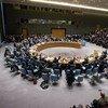 El Consejo de Seguridad de la ONU. Foto de archivo: ONU/Manuel Elias