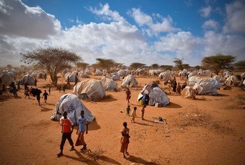 Temporary homes are pouring into the overflow area of the Ifo Extension camp in Dadaab, Kenya.