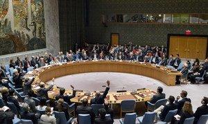 Le Conseil de sécurité a voté une résolution exigeant de nouveau d'Israël qu'il cesse immédiatement et complètement toute activité de peuplement dans le Territoire palestinien occupé, y compris Jérusalem-Est. Le résolution a été adoptée avec 14 voix pour, zéro contre et une abstention (Etats-Unis). Photo ONU/Manuel Elias