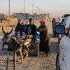 Una familia se lleva provisiones de ayuda humanitaria desde un punto de distribución en el este de Mosul, Iraq. Foto: UNICEF/Wathiq Khuzaie