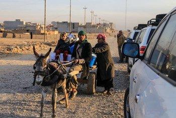 Une famille transporte des fournitures humanitaires sur un chariot dirigé par un âne depuis un centre de distribution situé dans la partie est de Mossoul, en Iraq.