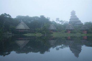 Le Centre de nature sauvage Napo, construit et conçu par la communauté autochtone Añangu, est situé dans le Parc national de Yasuni, dans la forêt tropicale amazonienne de l'Equateur.
