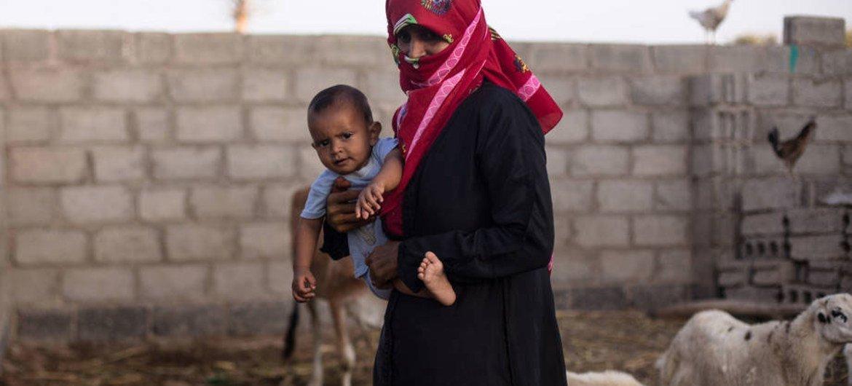 Yemen padece un alto grado de inseguridad alimentaria. Foto: FAO/Rawan Shaif