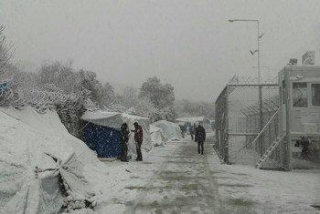 Мигранты  и искатели убежища на греческом острове  Лесбос, порытом снегом. Январь 2017  года. Фото ООН