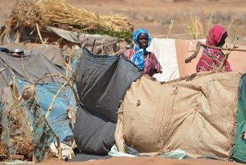 Wanawake waliotawanywa kutoka katika eneo la Jebel Marra Darfur wakiwa wamesimama pembezoni mwa makazi ya muda katika eneo la Tawilla, Darfur Kaskazini.