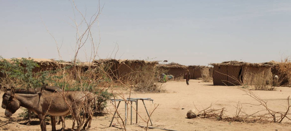 Ethiopia: UN-backed humanitarian appeal launched, seeking