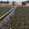 Filtro de tratamiento de aguas residuales en una planta de Connecticut, Estados Unidos. Foto: ONU/Evan Schneider