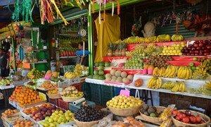 Les pays devraient promouvoir la production durable d'aliments frais, sûrs et nutritifs pour lutter contre le surpoids et l'obésité, qui ont considérablement augmenté, en particulier chez les femmes et les enfants, en Amérique latine et dans les Caraïbes. Photo FAO