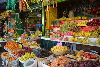 Countries should promote the sustainable production of fresh, safe and nutritious foods to counter overweight and obesity, which have greatly increased, especially among women and children, in Latin America and the Caribbean.