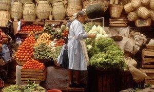 Algunos países están regulando las donaciones de alimentos y las formas de minimizar las pérdidas y el desperdicio de comida.